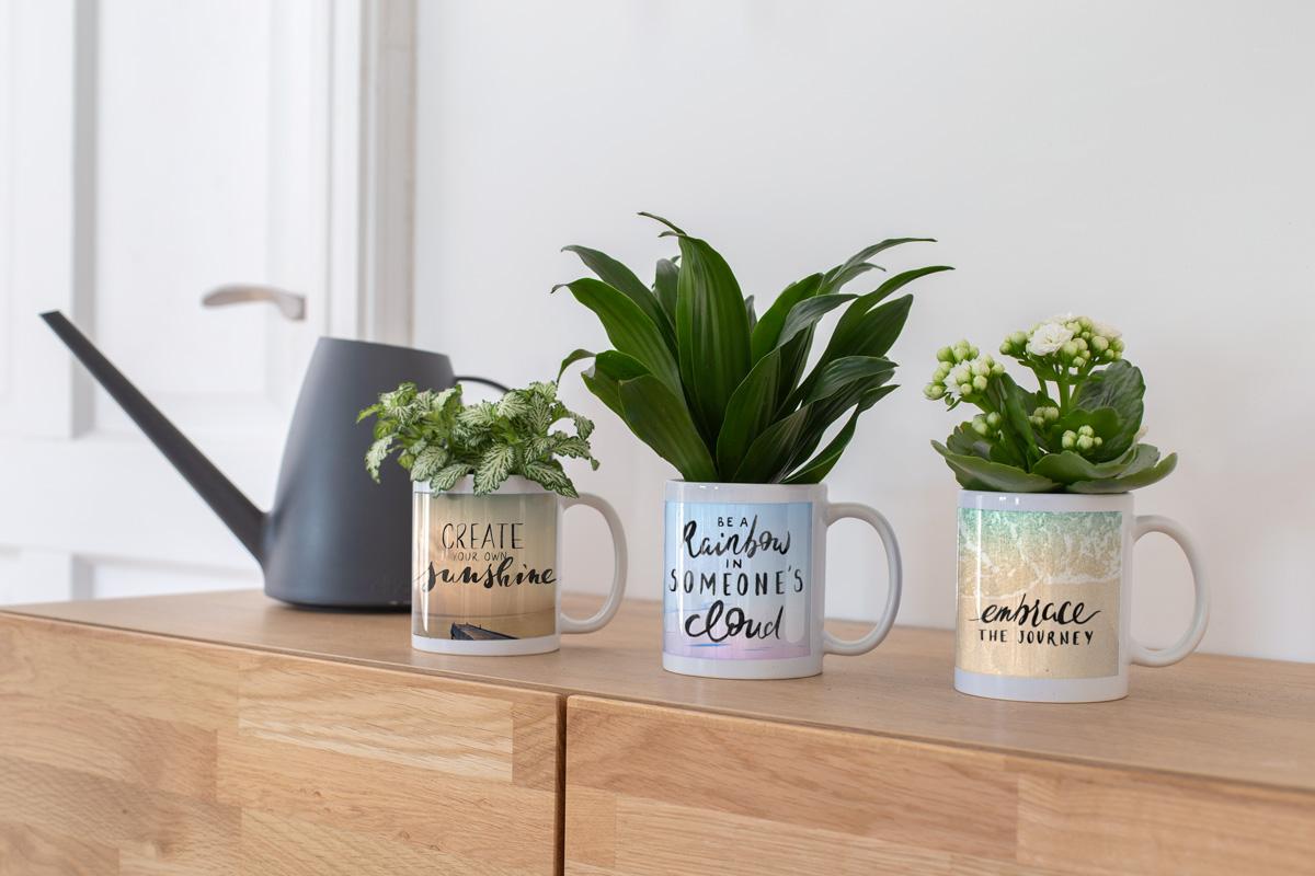 Woonruimte-decoreren-fotoproducten-mokken-bloempotten